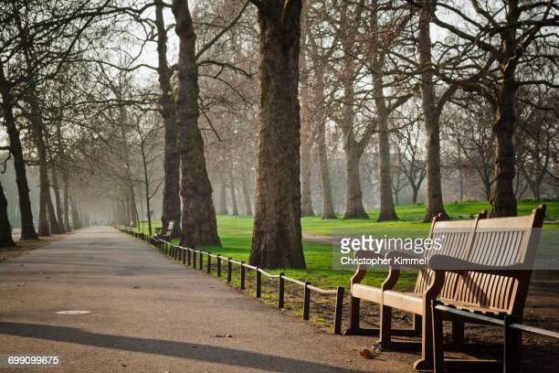 Park bench in Hyde Park, London.
