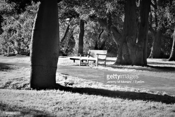 park bench on field - jeremy monaro stock pictures, royalty-free photos & images