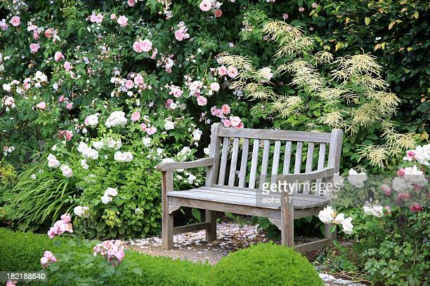 park bench sitting vacant near bushes of flowers - bush stock pictures, royalty-free photos & images