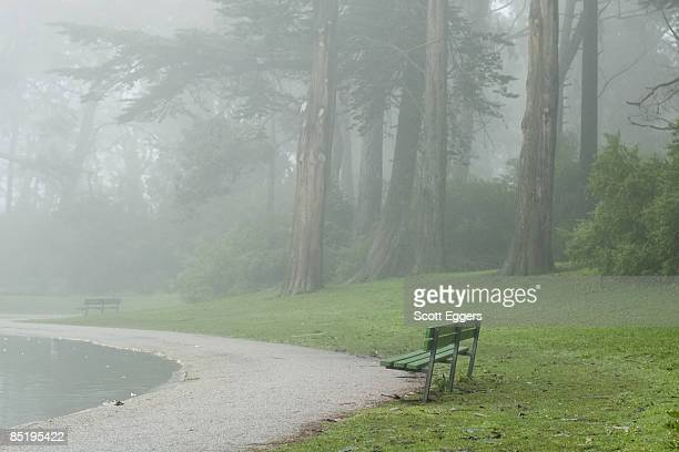 Park Benches and Walk