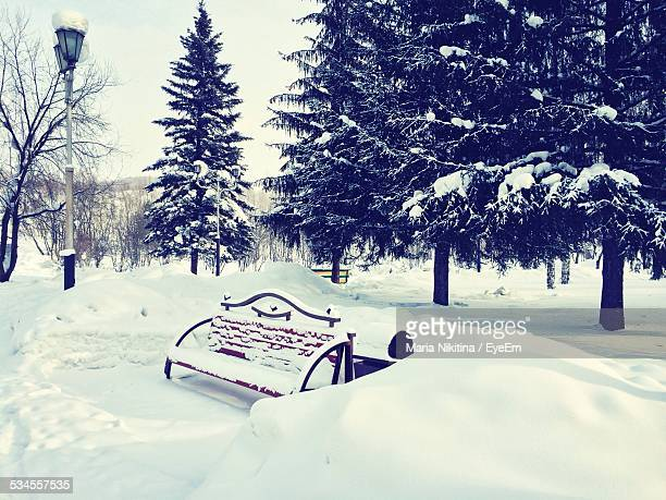 park covered with snow during winter - nikitina stock pictures, royalty-free photos & images