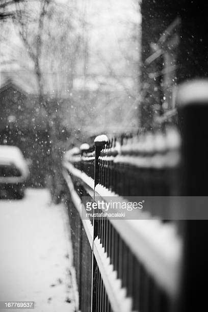 Park fence in a snowy day