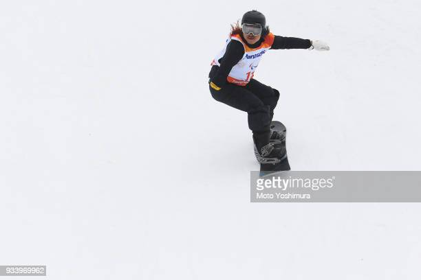 Park Hang Seung of South Korea competes in the Snowboard Men's Banked Slalom SBUL Run 1 on day seven of the PyeongChang 2018 Paralympic Games on...