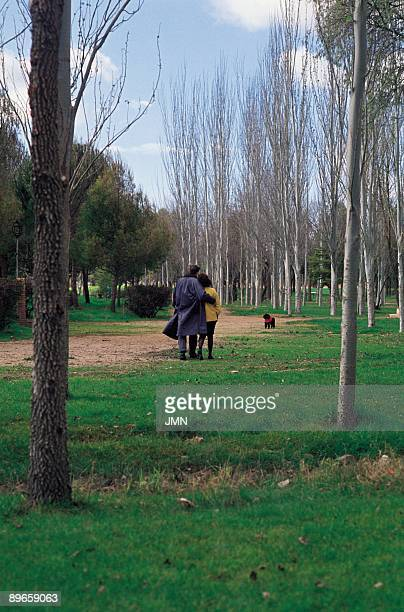 Park in Alcazar de San Juan Ciudad Real A couple of boyfriends goes for a walk with her dog in a park of the city