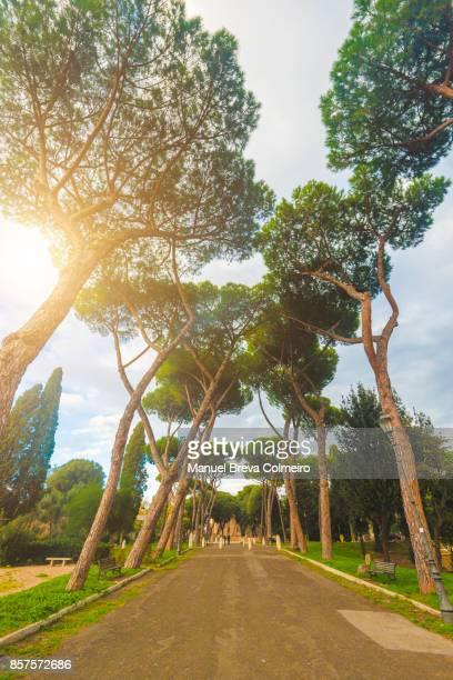 Park in Rome