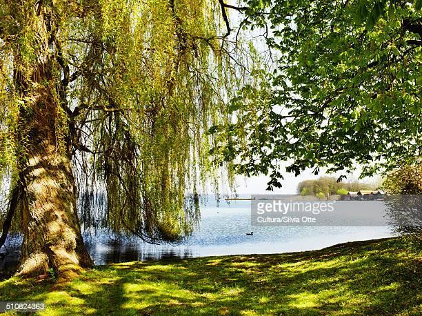 Park in Schwerin, Germany