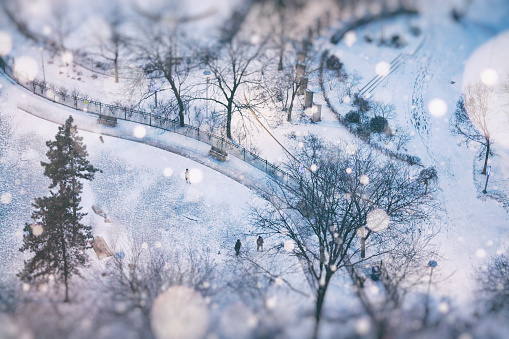 Park in Snow Globe of Toronto Winterscapes - gettyimageskorea