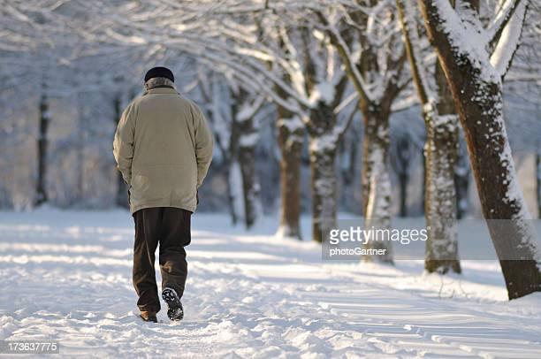 Park im Schnee