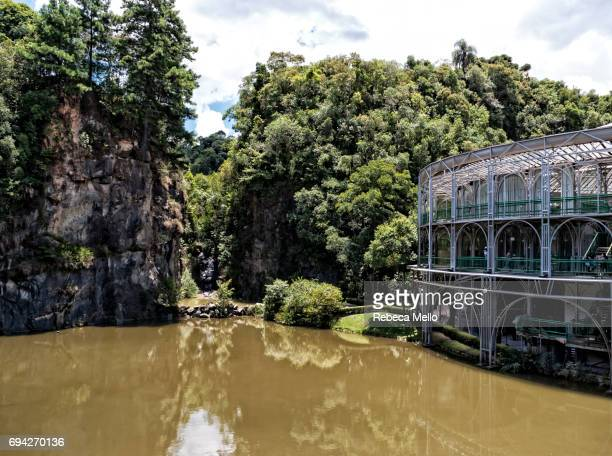 park of pedreiras - curitiba stock pictures, royalty-free photos & images
