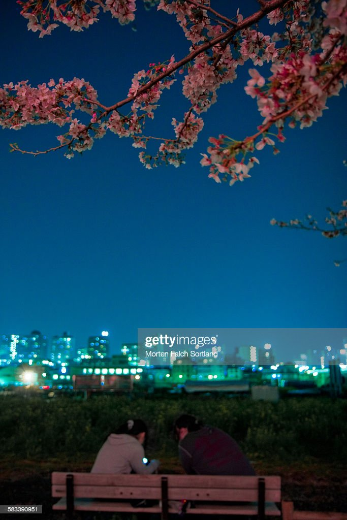 Park, people and cityscape : Stock Photo