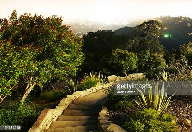 park - griffith park stock pictures, royalty-free photos & images