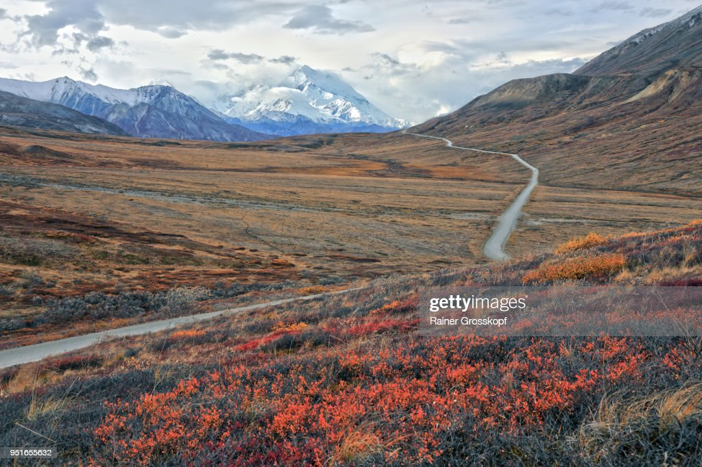 Park road in an autumn tundra landscape leading toward Mount Denali : Stock-Foto