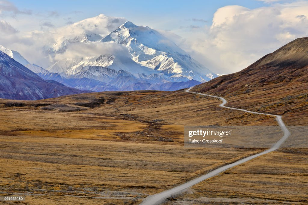Park road in autumn landscape leading toward Mount Denali : Stock-Foto