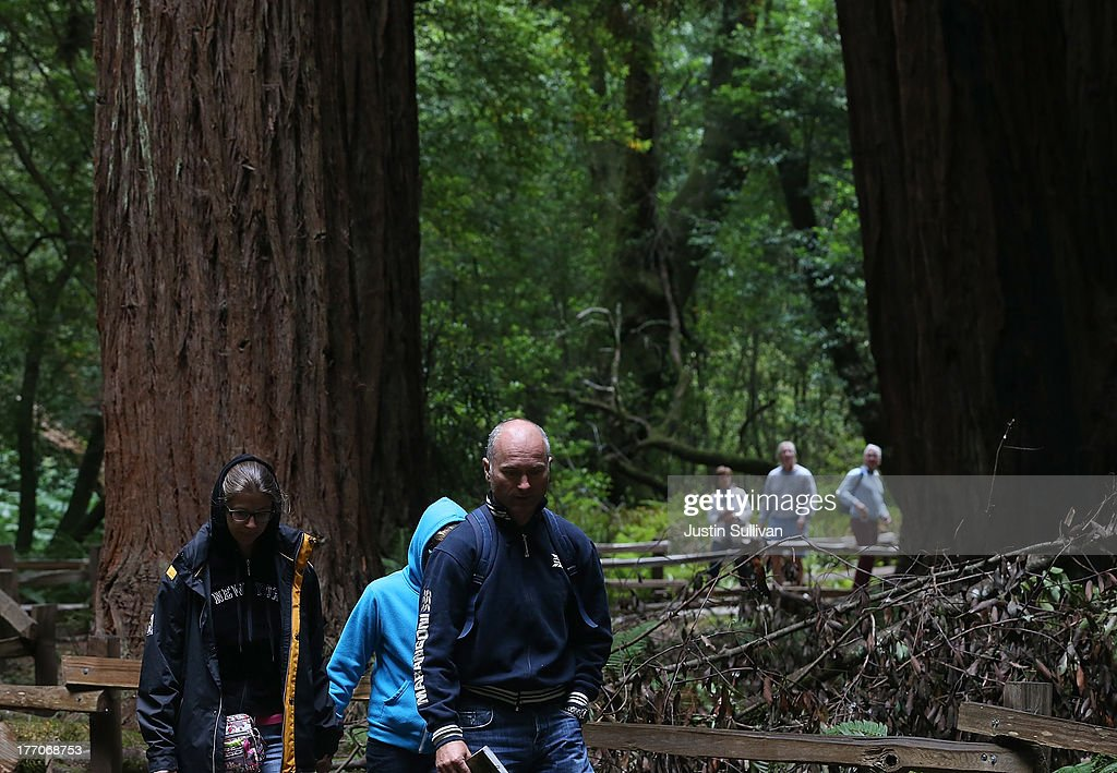 Park visitors walk along a path of Coastal Redwood trees at Muir Woods National Monument on August 20, 2013 in Mill Valley, California. A four-year study by the Save the Redwoods League called 'the Redwoods and Climate Change Initiative' found that due to changing environmental conditions, California's Coast Redwoods and Giant Sequoias are experiencing an unprecedented growth surge and have produced more wood over the past century than any other time in their lives.
