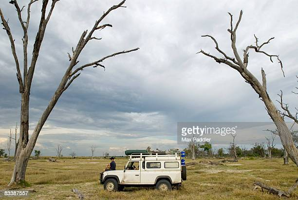 a 4x4 parked between dead trees on dead tree island, moremi wildlife reserve, botswana - moremi wildlife reserve stock photos and pictures