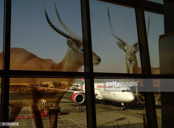 TOPSHOT A parked Boeing 7878 passenger plane bearing the Kenya Airways livery is seen through a window advertising decal showing antilopes on January...