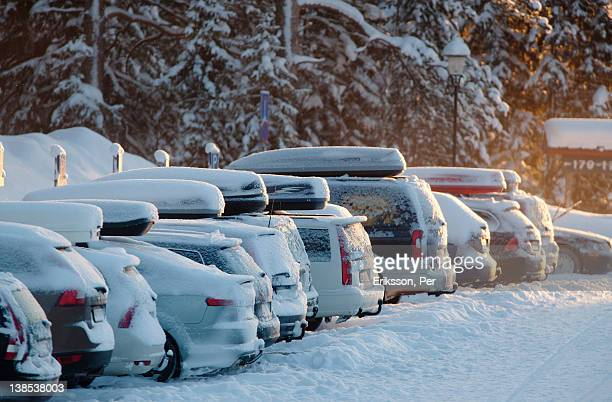 Parked cars covered in snow