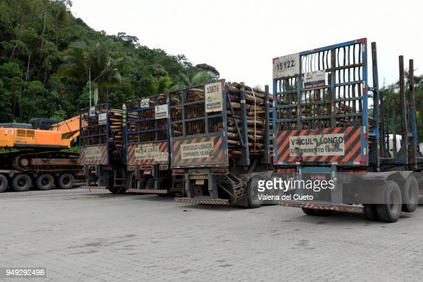 Parked trucks ready to travel