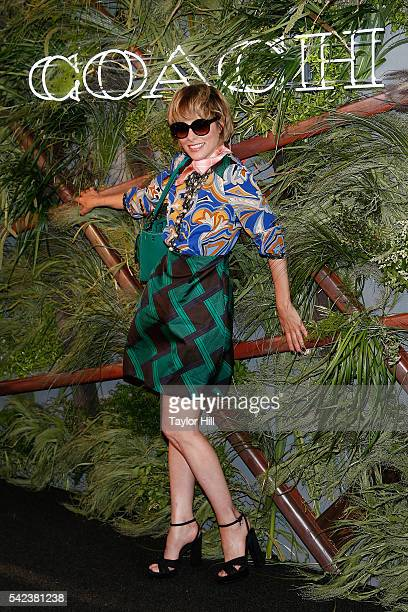 Parker Posey attends the 2016 Coach and Friends Of The High Line Summer Party at The High Line on June 22 2016 in New York City