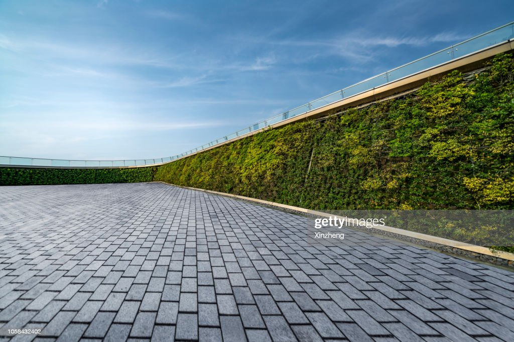 Parking Lot, Wall decorated with the plants : Stock Photo