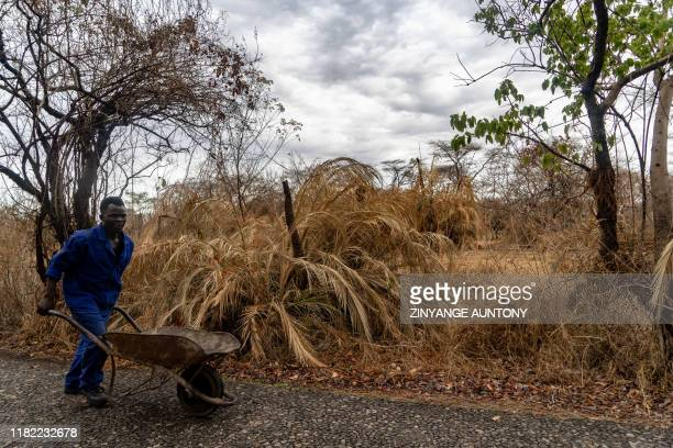 A parks employee work on renovations along paths in the rainforest at the Victoria Falls a major tourism attraction for Zimbabwe Victoria Falls on...