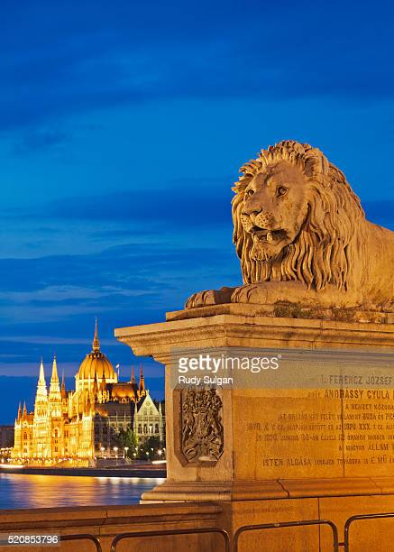 parliament building in budapest - budapest stock pictures, royalty-free photos & images
