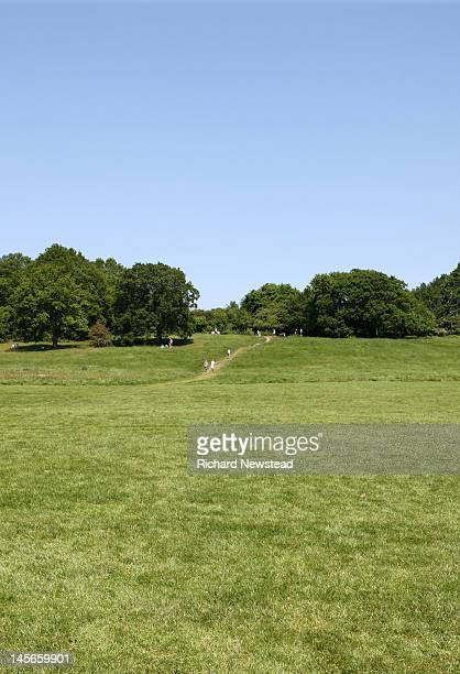 parliament hill - hampstead heath stock pictures, royalty-free photos & images