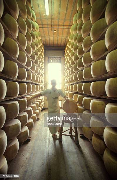 Parmesan Cheese Being Aged