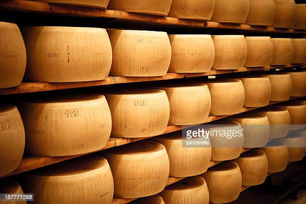 Parmesan cheese wheels laiding out in the silent maturation room