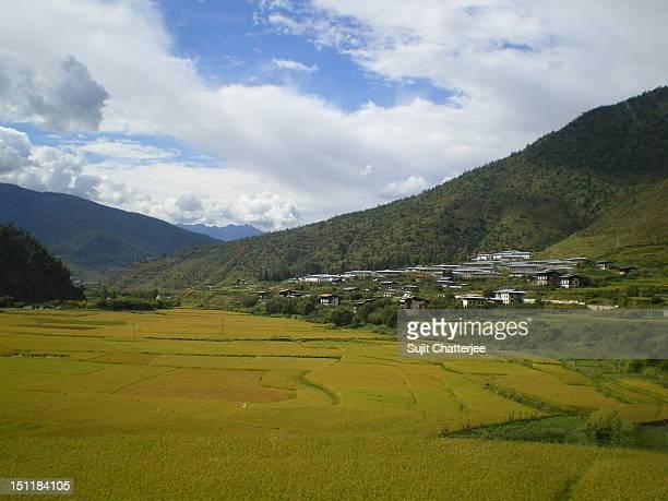paro landscape, bhutan - paro district stock pictures, royalty-free photos & images