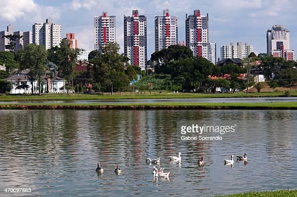 Parque Barigui / Barigui Park