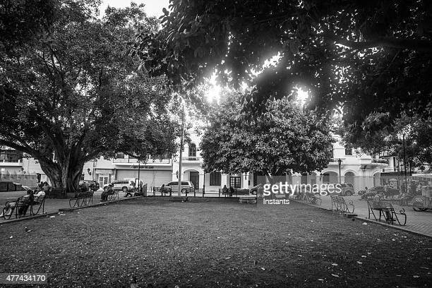 parque colon - santo domingo dominican republic stock pictures, royalty-free photos & images