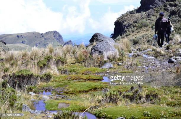Parque de los Nevados Colombia
