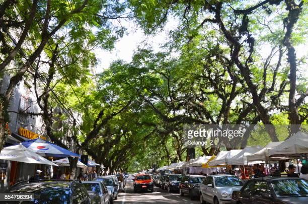 parque farroupilha in porto alegre, brazilië - pôrto alegre stockfoto's en -beelden