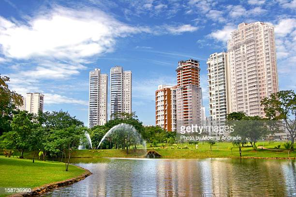 parque flamboyant - goiania stock pictures, royalty-free photos & images
