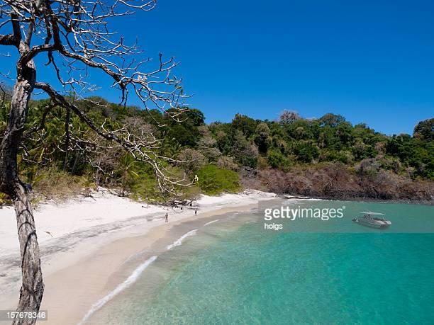 parque nacional marino el golfo de chiriqu - panama fotografías e imágenes de stock