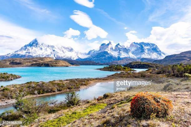 parque nacional torres del paine, chile - torres del paine national park stock photos and pictures