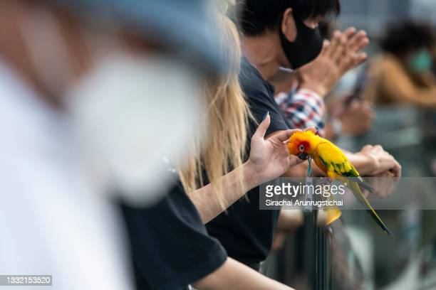 Parrot with protest sign is seen being pet during the Harry Potter-themed protest at Bangkok Art and Culture Center in downtown on August 03, 2021 in...