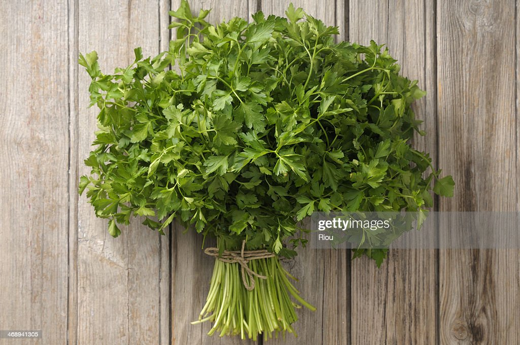 parsley : Stock Photo