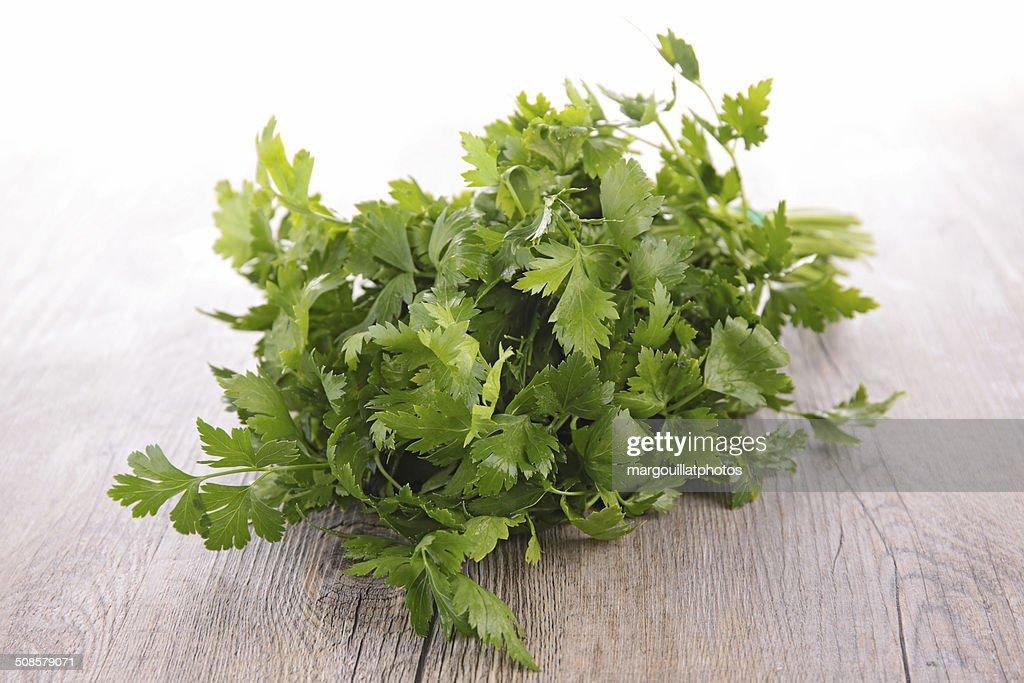 parsley : Stock Photo