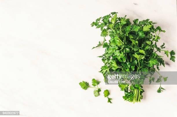 parsley - peterselie stockfoto's en -beelden