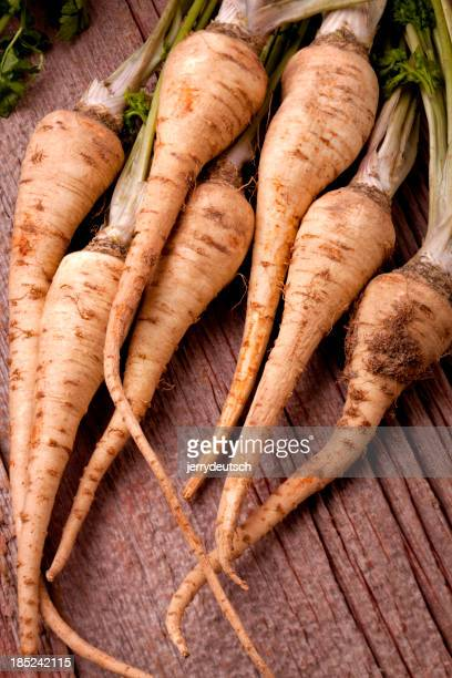 parsley root vertical
