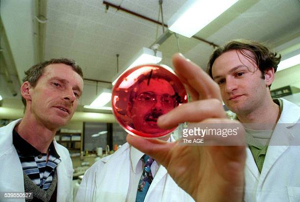 Part of athe team of RMIT scientists who have developed the Salmonella vaccine On the right is George Moutafis and left is Wayne Christopher 26 May...
