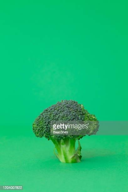 part of broccoli on green background - objet quotidien photos et images de collection