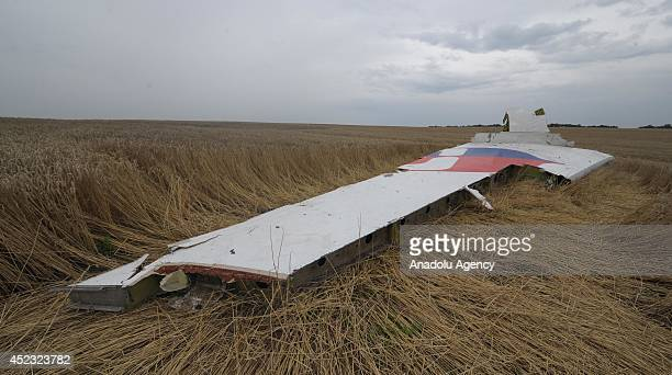 Part of plane is seen amongst the wreckages of a Malaysia Airlines Boeing 777 carrying 295 people from Amsterdam to Kuala Lumpur after it was downed...