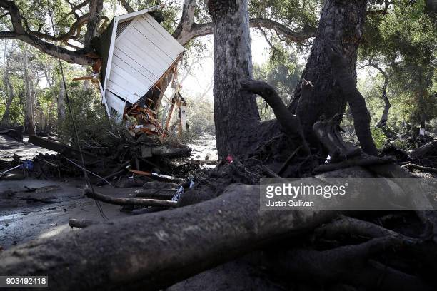 Part of structure sits in a tree after being knocked off its foundation by a mudslide on January 10 2018 in Montecito California 15 people have died...