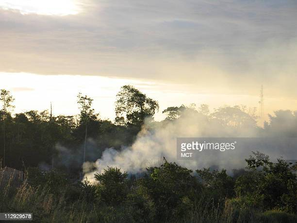 Part of the Amazon rain forest is burned June 21 near Tailandia Brazil Brazil is the world's fourth biggest emitter of greenhouse gases largely due...