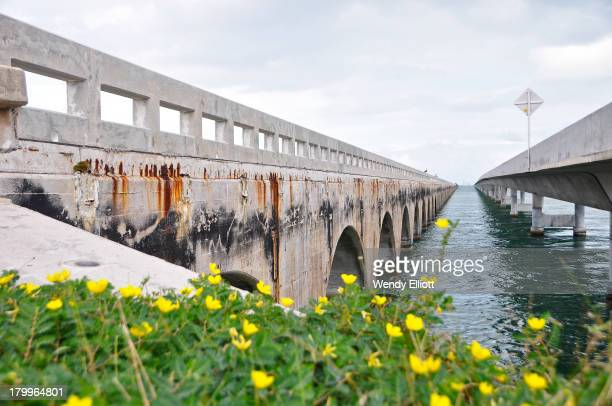 CONTENT] Part of the Overseas Highway this bridge connects Knight's Key in the city of Marathon in the middle Keys to the Little Duck Key in the...