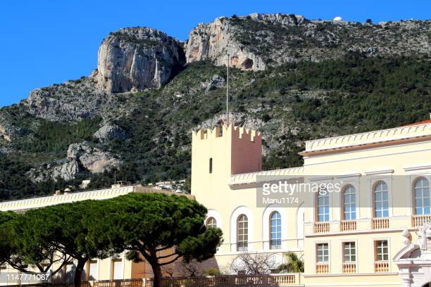 part of the prince's palace in monte carlo monaco in spring time - monte carlo stock pictures, royalty-free photos & images