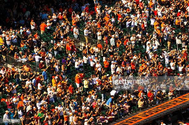 Part of the sellout crowd along the third base line cheer for their Giants